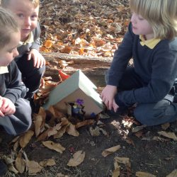 Discovering Fairy Houses