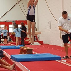 Our gymnastics team in action!