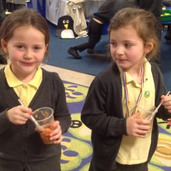 Year 1 Making & Tasting Soup