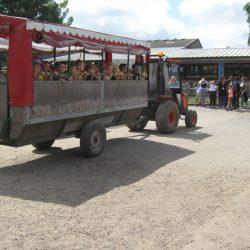 Year R Trip to Godstone Farm