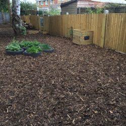 Our Wildlife Garden - after
